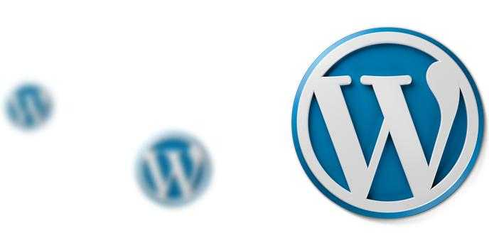 WordPress Full Ekran Photofly Teması