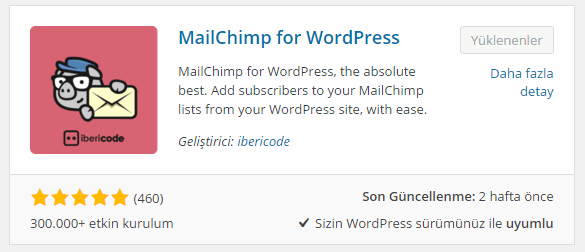 Wordpress e-Posta Abonelik Eklentisi - MailChimp for WordPress