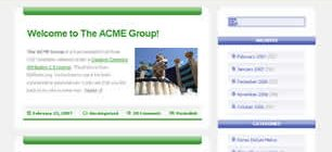 The ACME Group Web Site Tasarımı