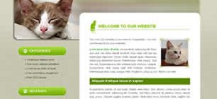 Animals & Pets Web Site Tasarımı