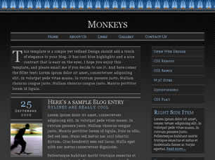Monkeys Web Site Tasarımı