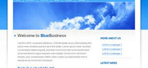 BlueBusiness Web Site Tasarımı