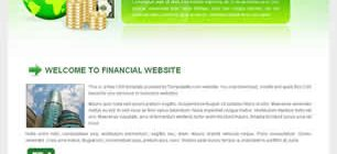 Financial Website Web Site Tasarımı