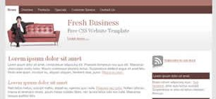 Fresh Business Web Site Tasarımı