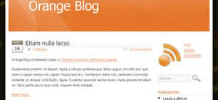 Orange Blog Web Site Tasarımı