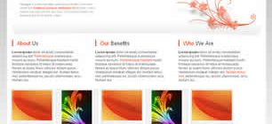 Orange Web Site Tasarımı