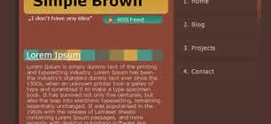 Simple Brown Web Site Tasarımı