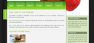 Strawberry Web Site Tasarımı