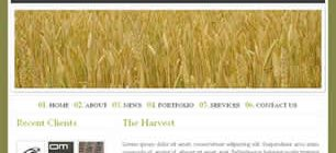 The Harvest Web Site Tasarımı