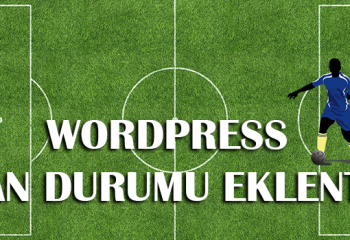 (Turkish) WordPress Puan Durumu Eklentisi