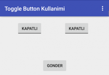 Android ToggleButton Example